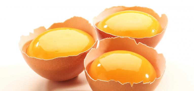 vitamina b8 e gema de ovo