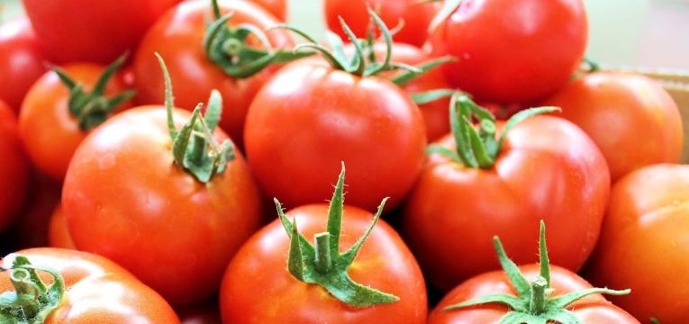 tomate como alimentos para manter a saúde do idoso