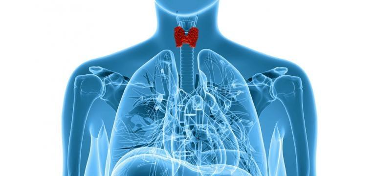Hipertiroidismo e glandulas tiroideias