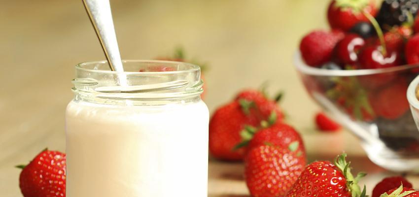 iogurte e alimentos probioticos