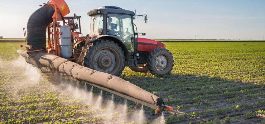alimentos com mais pesticidas e consequencias para a saude