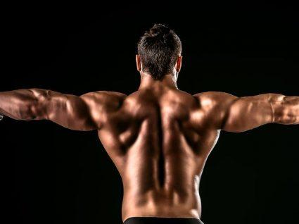 O top 5 dos exercícios básicos para ganhar massa muscular