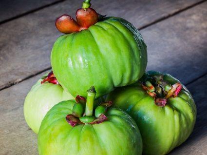 Garcinia Cambogia: uma planta que emagrece?