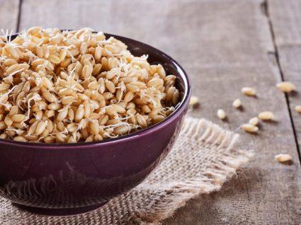 Gérmen de Trigo: o embrião do grão de trigo