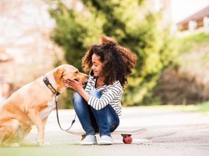 13 Erros que os donos cometem com os cães e nem sabem!