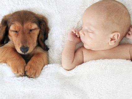 8 erros dos pais na hora de adormecer o bebé