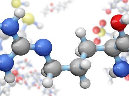 Aminoácidos: o que são, qual a sua importância e onde pode encontrá-los