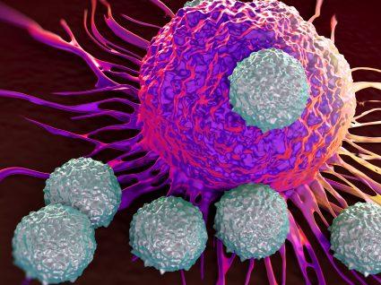 A importância dos linfócitos T no organismo