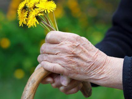 Causas de Parkinson: tudo o que precisa de saber