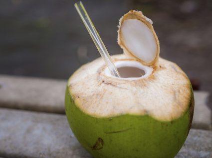 Água de Coco: a nova bebida da moda?