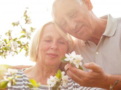Tudo sobre o complemento solidário para idosos