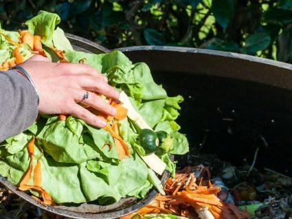 Como evitar o desperdício dos alimentos: dicas práticas para o dia-a-dia