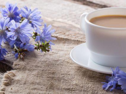 Chá de chicória: benefícios e precauções