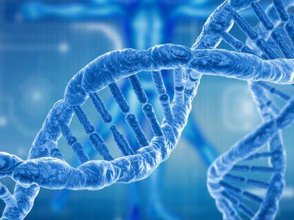 Dieta do ADN: quando a ciência fala mais alto!