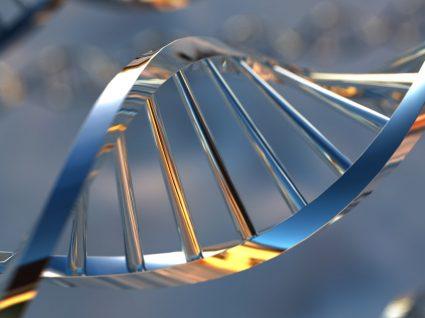 Nutrigenética: a dieta do ADN