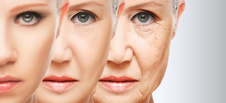 envelhecimento