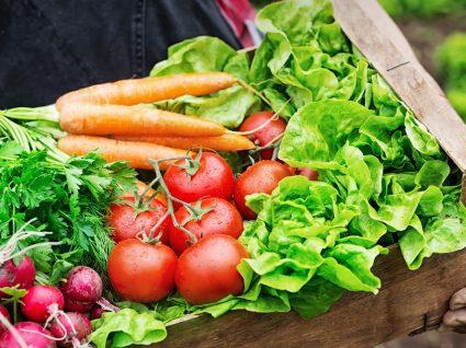 Associação Portuguesa de Nutrição lança recomendações para uma alimentação mais sustentável