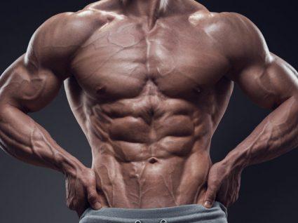 A influência da nutrição e descanso no crescimento muscular