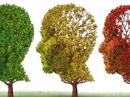 Alimentos para prevenir a demência: saiba quais são!