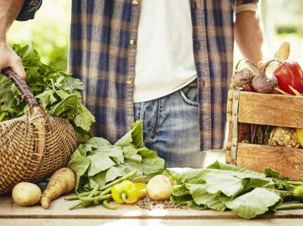 Como fazer uma alimentação sustentável?