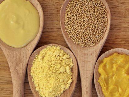 Semente de mostarda : sabe o que é?