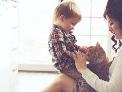 5 Dicas para ser uma Mãe Guerreira mais tranquila no dia-a-dia