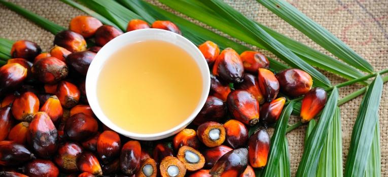oleo de palma