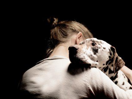 Patologias congénitas cardíacas em cães: o que saber