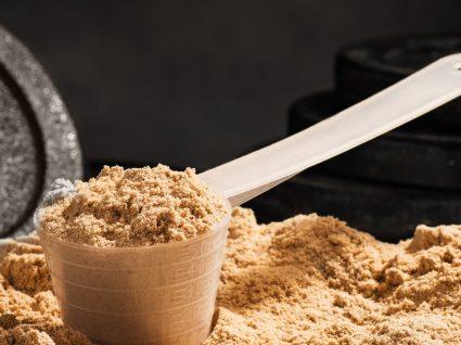 Whey Protein Hidrolisada: Será que se justifica a sua utilização?