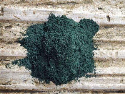 Spirulina: uma alga com superpoderes?