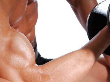 Qual a melhor fonte proteica para construir músculo: animal ou vegetal?