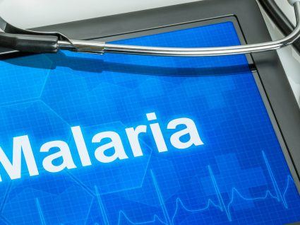 Malária: sintomas, tratamento e prevenção