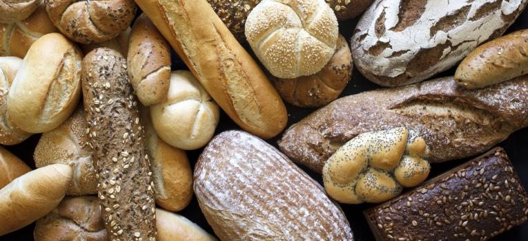 quais sao os alimentos com hidratos de carbono