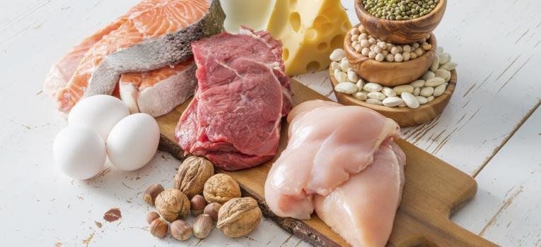 varias fontes de proteina