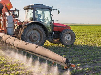 Alimentos e pesticidas: cuidados a ter