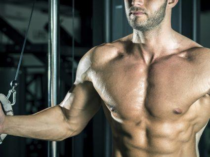 Treino de Peito – a importância da correção postural