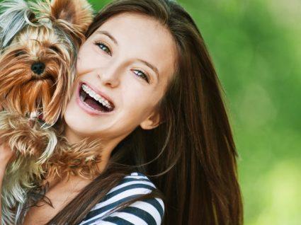 Conheça as novas regras para venda de animais de companhia na internet