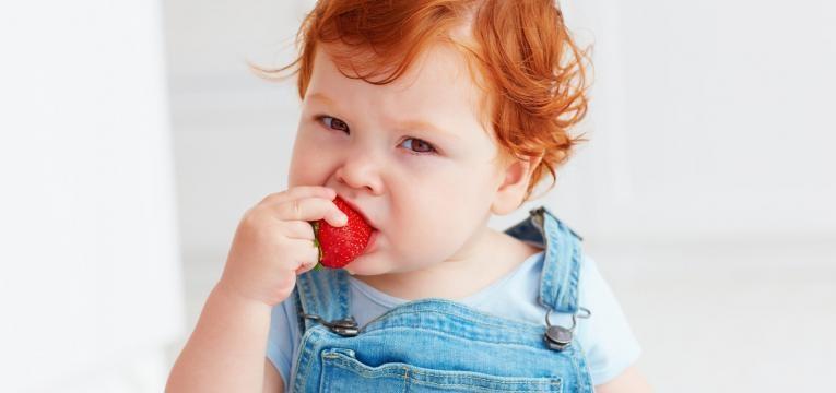 alimentos que provocam alergias alergia alimentar