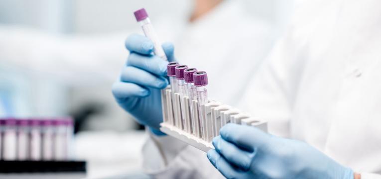 investigacao portuguesa destacada investigacao laboratorio