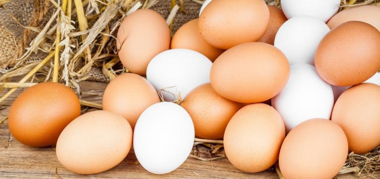 alergias alimentares mais comuns na infancia ovos inteiros com casca