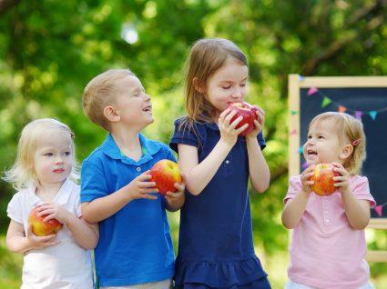 incentivar o consumo de fruta aos portugueses