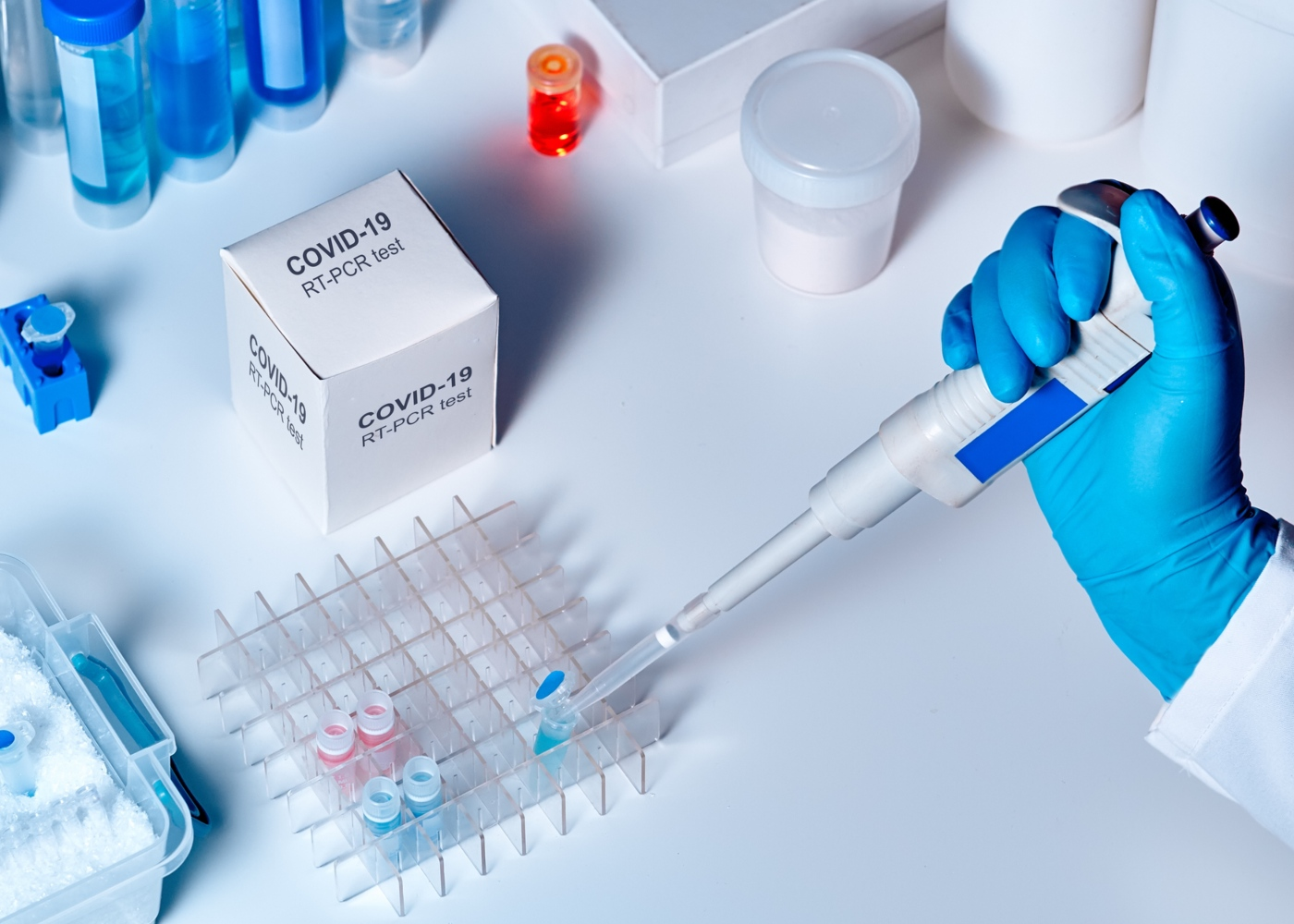 Animal responsável pelo Coronavírus: cientista a fazer testes