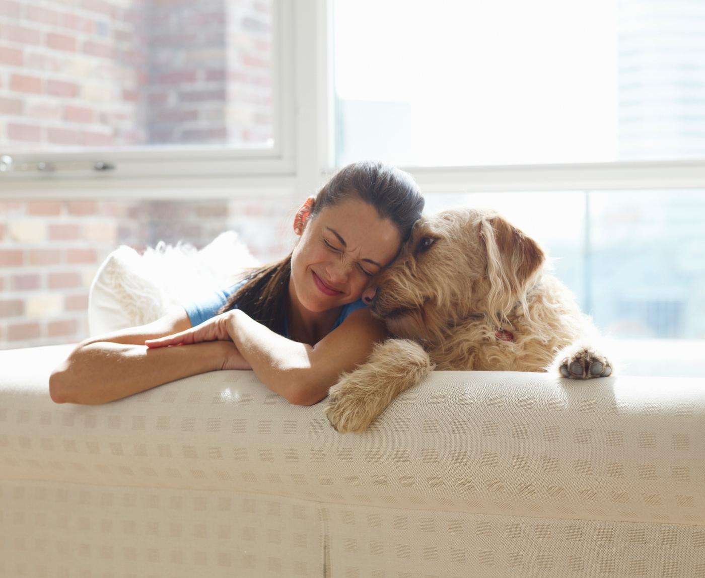 Novo coronavírus em animais: tutora e cão sentados no sofá a brincar