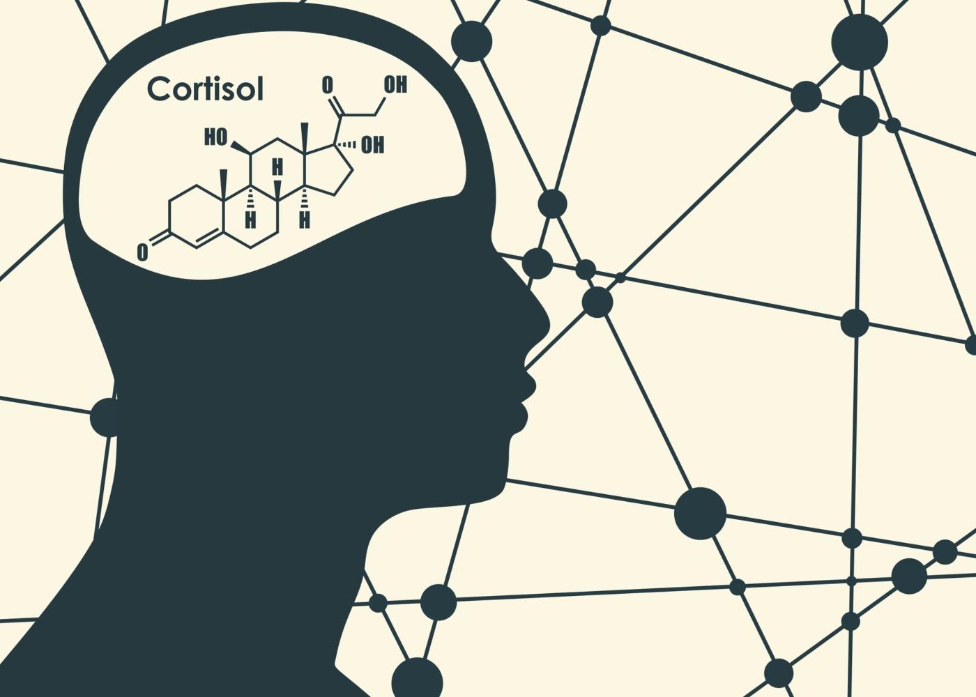 Efeitos do cortisol no organismo