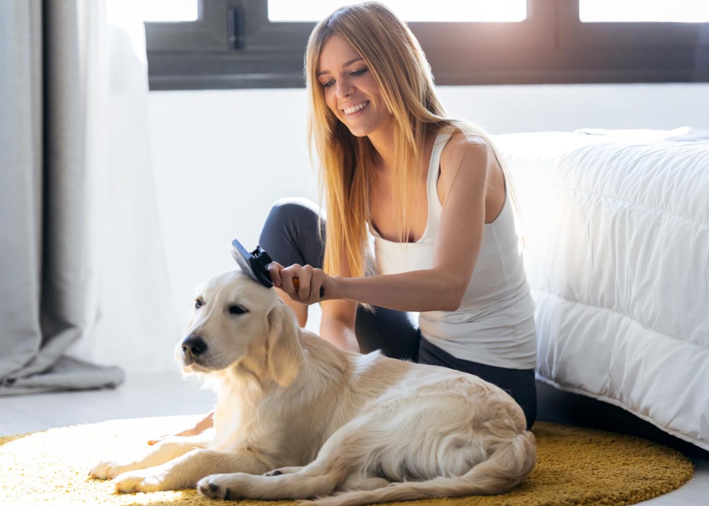 Mulher a escovar pelo do seu patudo para evitar o cheiro a cão