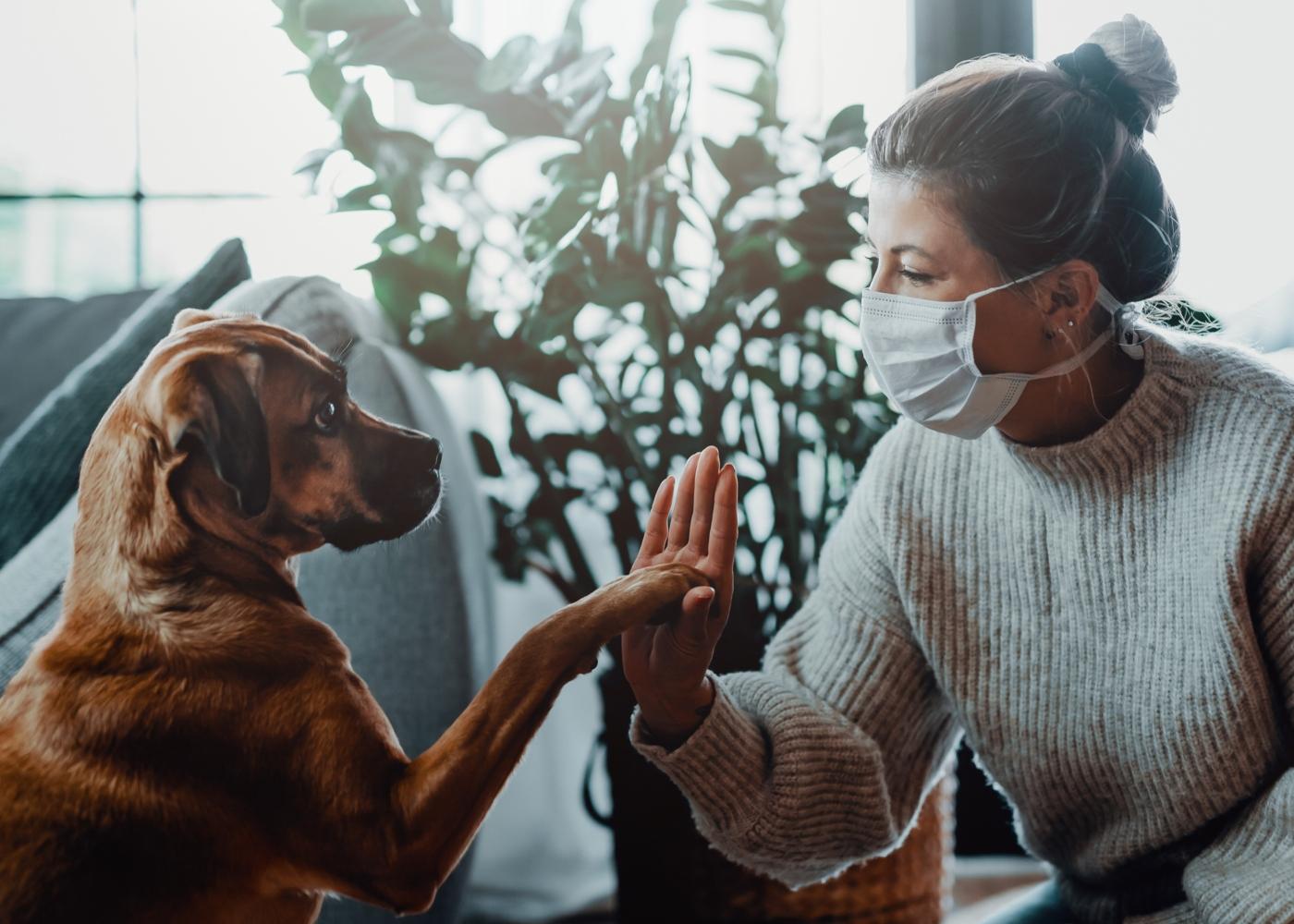 Mulher com COVID-19 a brincar com o cão