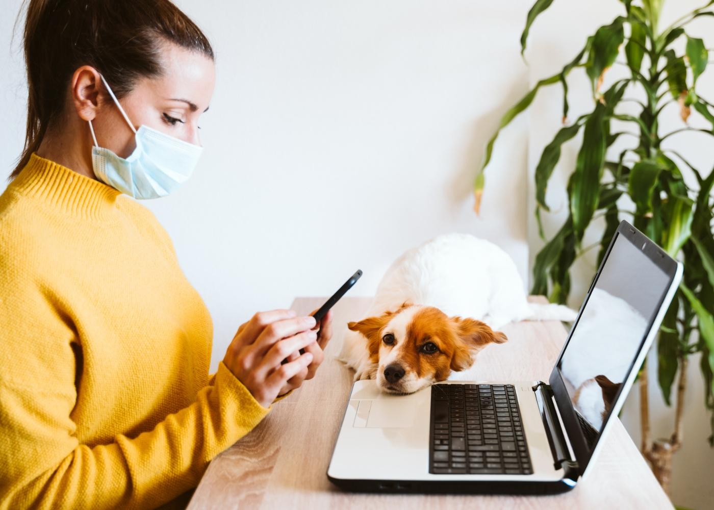 Mulher infetada com COVID-19 e animal de companhia