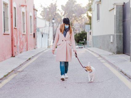 COVID-19: passear o cão com máscara de proteção