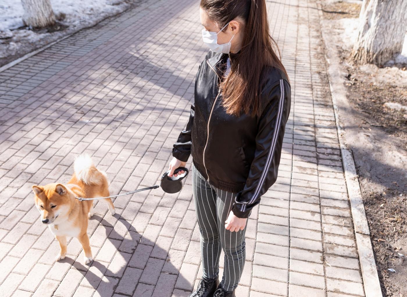 Mulher a passear o cão com máscara