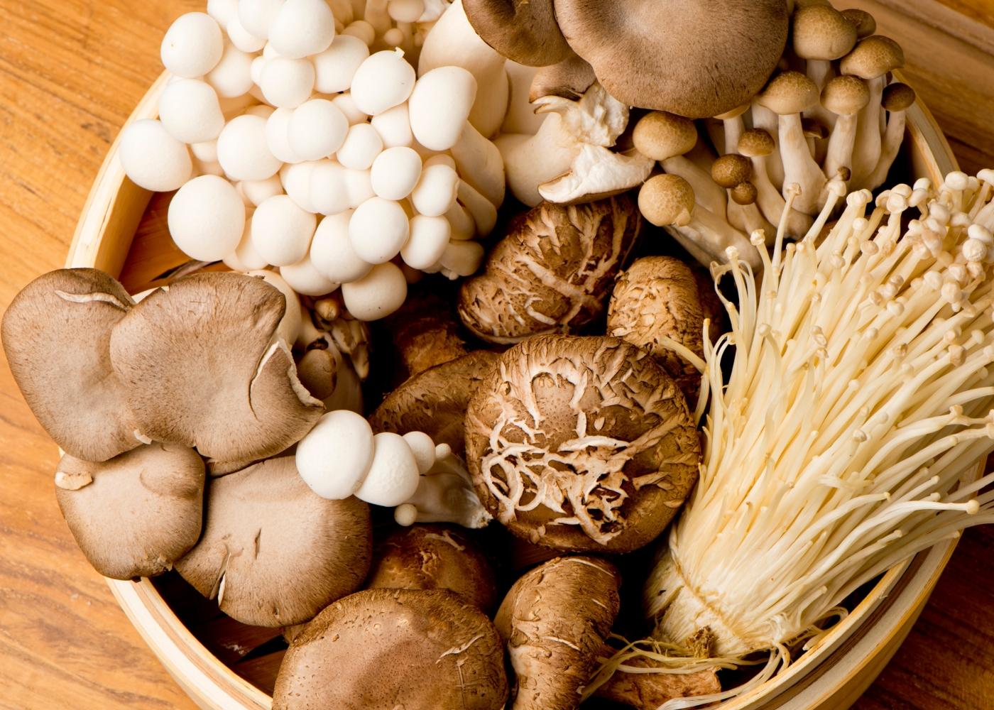 Cesto com variedade de cogumelos